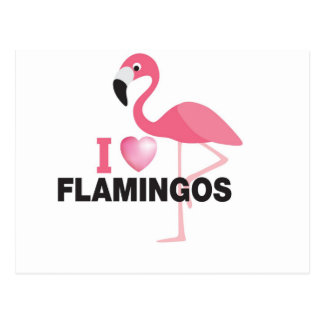 i love flamingos postcard