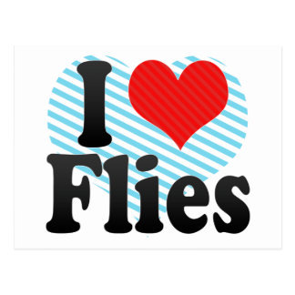 I Love Flies Postcard