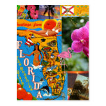 I Love Florida Postcards