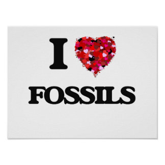 I Love Fossils Poster