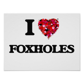I Love Foxholes Poster