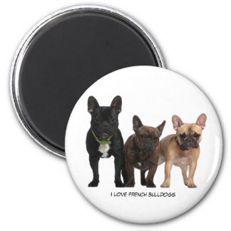 I love French Bulldogs Magnet