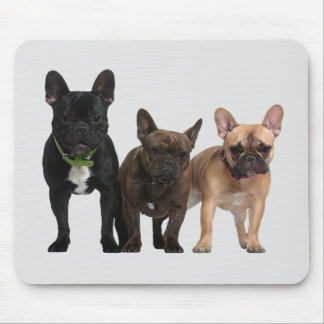 I love French Bulldogs Mouse Pad