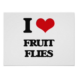 I love Fruit Flies Print