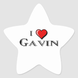 I Love Gavin Star Sticker