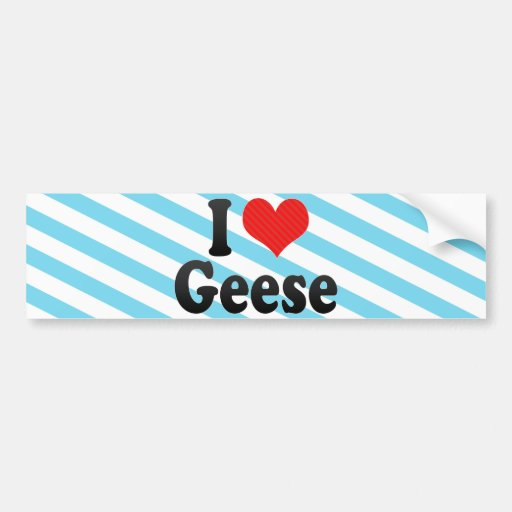 I Love Geese Bumper Stickers