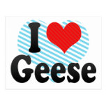 I Love Geese Post Card