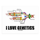 I Love Genetics (DNA Replication) Post Card