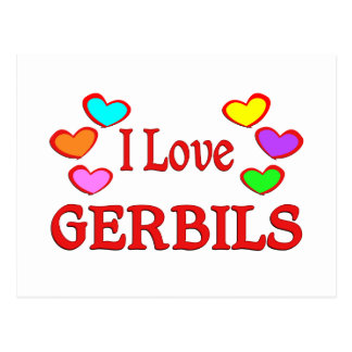 I Love Gerbils Postcard