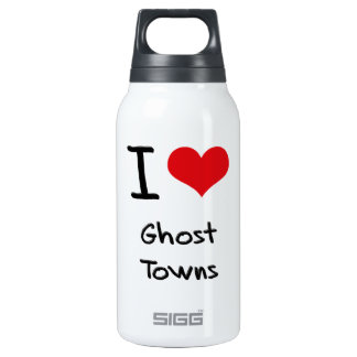 I Love Ghost Towns 10 Oz Insulated SIGG Thermos Water Bottle