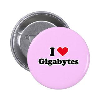 I love gigabytes pin