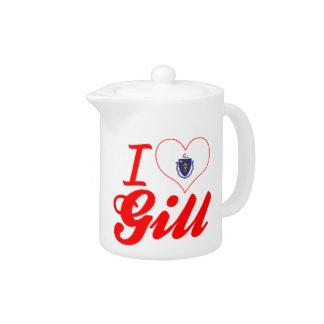 I Love Gill, Massachusetts