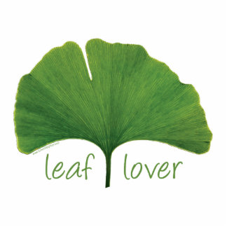 I Love Ginkgo Trees Photo Cut Out