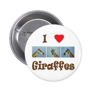 I love giraffes pinback button