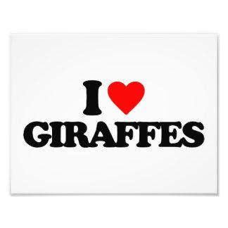 I LOVE GIRAFFES PHOTO ART