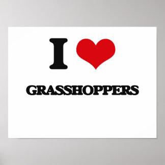 I love Grasshoppers Poster