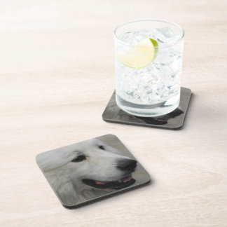 I Love Great Pyrenees Drink Coasters