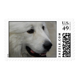 I Love Great Pyrenees Postage Stamp