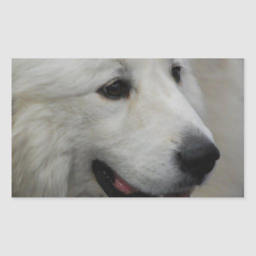 I Love Great Pyrenees  Stickers