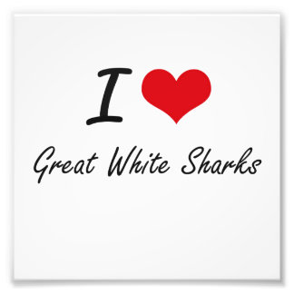 I love Great White Sharks Photo Print