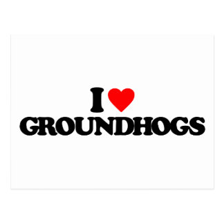 I LOVE GROUNDHOGS POSTCARD