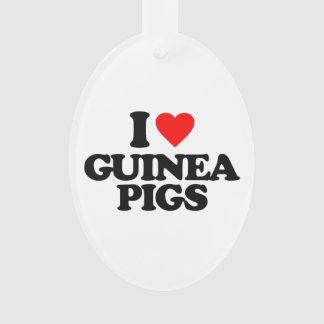 I LOVE GUINEA PIGS