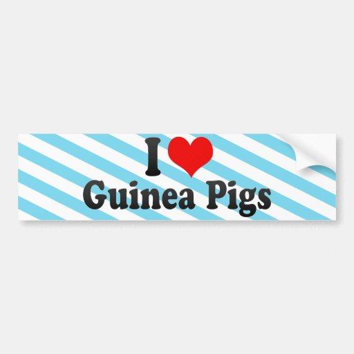 I Love Guinea Pigs Car Bumper Sticker