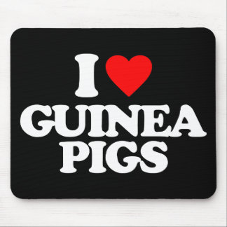 I LOVE GUINEA PIGS MOUSE PADS