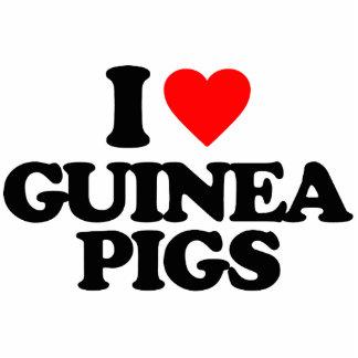 I LOVE GUINEA PIGS ACRYLIC CUT OUTS