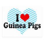 I Love Guinea Pigs Postcard
