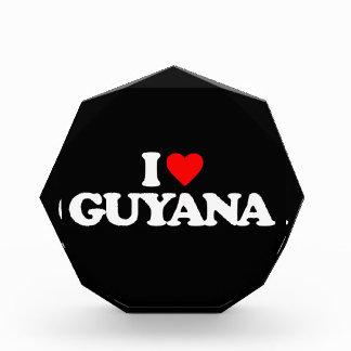 I LOVE GUYANA ACRYLIC AWARD