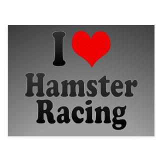 I love Hamster Racing Postcard
