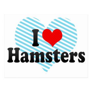 I Love Hamsters Postcard