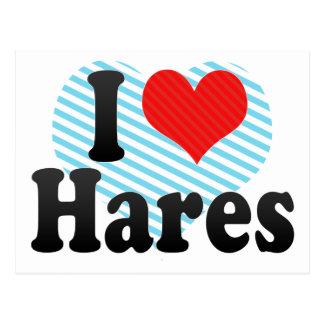 I Love Hares Postcard
