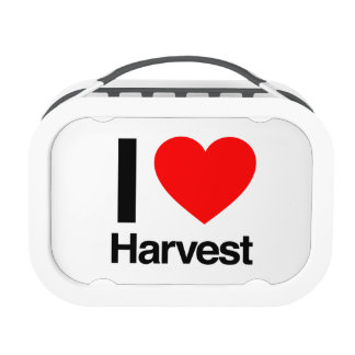 i love harvest replacement plate