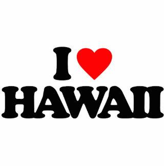 I LOVE HAWAII PHOTO CUT OUTS