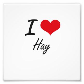 I love Hay Photo Print