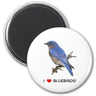 I Love (heart) Bluebirds 2 Inch Round Magnet