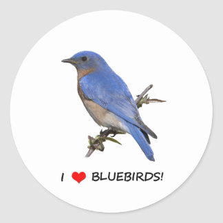 I Love (heart) Bluebirds Classic Round Sticker