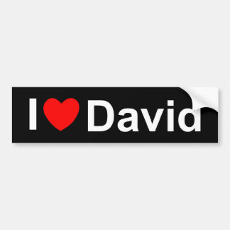 I Love (Heart) David Bumper Sticker