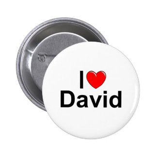 I Love (Heart) David Pinback Button