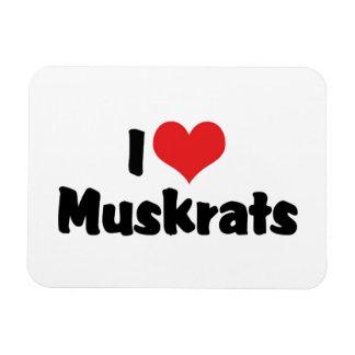 I Love Heart Muskrats Magnet