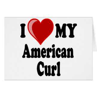 I Love (Heart) My American Curl Cat Greeting Card