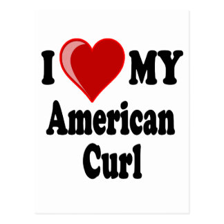 I Love (Heart) My American Curl Cat Postcard