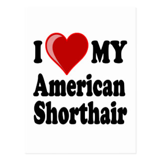 I Love (Heart) My American Shorthair Cat Postcard