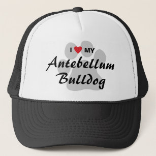 I Love (Heart) My Antebellum Bulldog Trucker Hat 17597b414dd