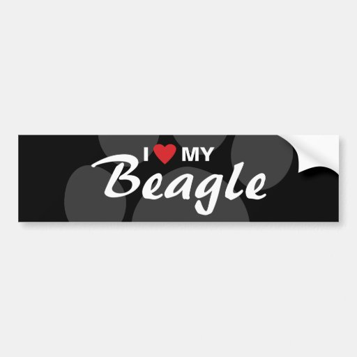I Love (Heart) My Beagle Breed Bumper Sticker