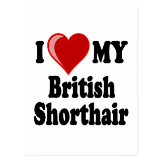 I Love (Heart) My British Shorthair Cat Postcard