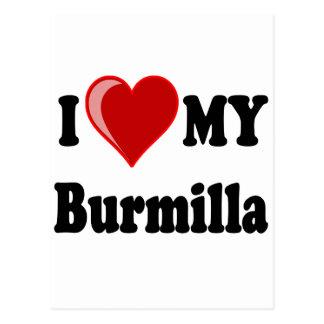 I Love (Heart) My Burmilla Cat Postcard