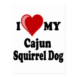 I Love (Heart) My Cajun Squirrel Dog Postcard